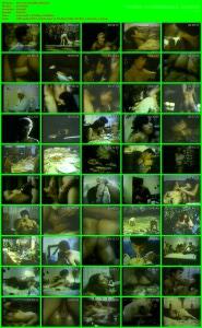 Sexo com chantilly (1985).avi
