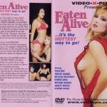etn_alve_cover